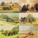 Ferguson Tractors Greeting Cards