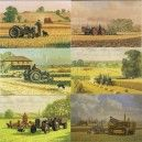 Ferguson and Fordson Tractors Greeting Cards