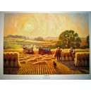 Stooking - Fordson Tractor Print